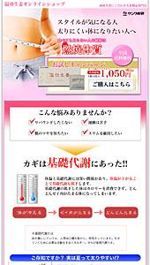 サンワ食研|温効生姜|ランディングページ