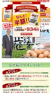 ランディングページ|「てまひま堂」のにんにく卵黄【229-55~ニンニク・ゴーゴー】