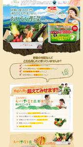 九州野菜の宅配・通販は九州野菜王国へ!!